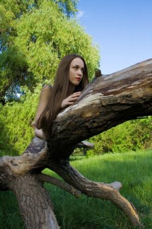 Beautiful girl lying on a tree Stock Photo - 17414730