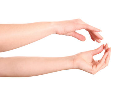 womans hands: Beautiful womans hands on white background. Stock Photo
