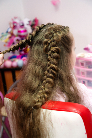Braid Hairstyle,grey Brown long hair