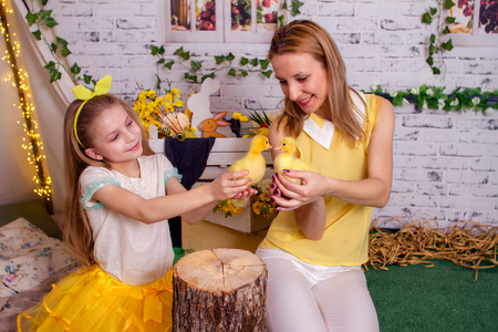 Mom and daughter are playing with small ducklings Stock Photo
