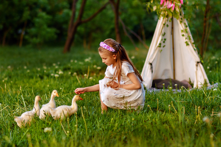 Little girl playing with ducklings on grass Stock Photo