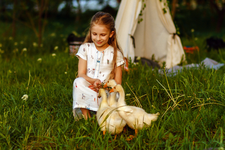 Little girl playing with goose on grass