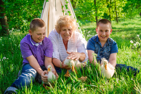 Grandmother with grandchildren playing with geese sitting on grass