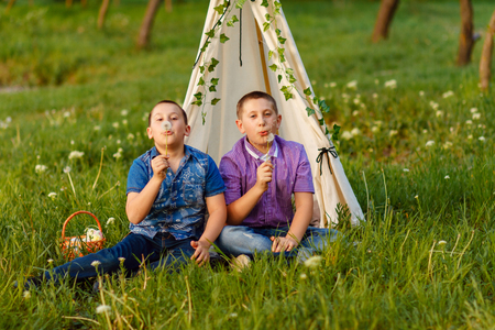 Boys blowing dandelion seeds outdoors in a field. People, male. Stock Photo