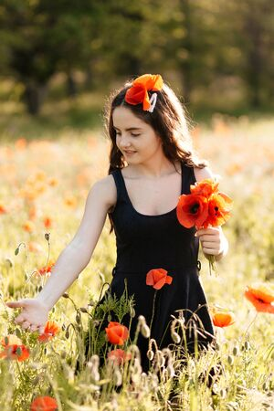 Young woman picks red flowers in a poppy field 写真素材