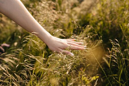 The girl`s hand stroking the green grass, concept of unity with nature