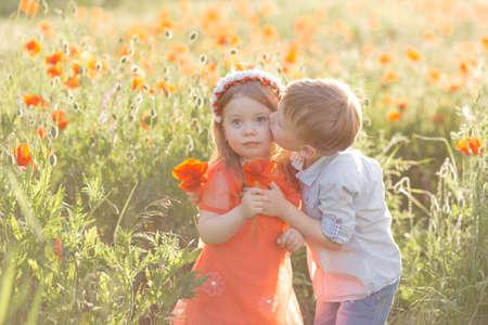 Boy kisses a beautiful girl in a poppy field 写真素材
