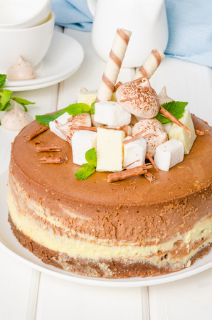 Marble chocolate coffee cheesecake with meringue, marshmallow and chocolate on top Imagens - 102873743