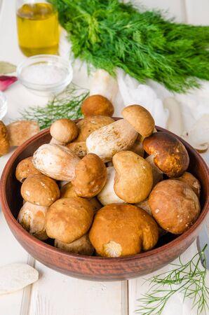 Fresh forest white mushrooms