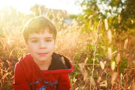 five year old: Portrait of a five year old boy at sunset in the field among the ears dry