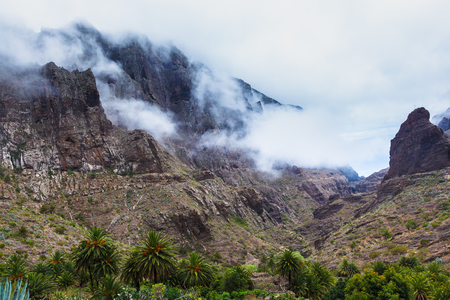 Fabulous Masca mountain gorge the most visited tourist attraction on Tenerife