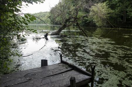 swampy: Lake Trostyantse