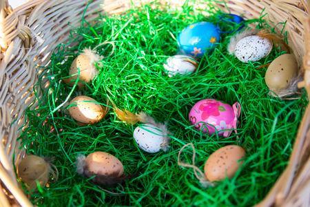 Color Easter eggs in the straw basket with green grass inside in sunny spring day. Stockfoto