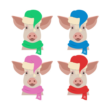 Vector pig head in winter new year, christmas clothing: hat and scarf. Isolated Design object in flat, cartoon style. Chinese new year symbol. Poster, banner, print, advertisement element.