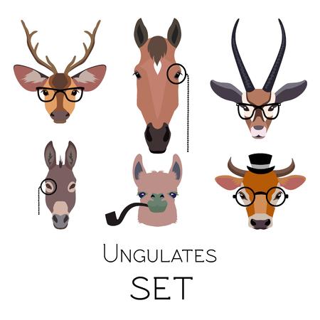 モノクル眼鏡やばらばらの喫煙パイプを身に着けているベクトル ヒップスターの有蹄類では、動物セット有蹄類。・ ラマ鹿アンテロープ ロバ馬分
