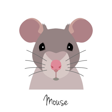 Vector rat head. Animal of Chinese zodiac symbol. flat cartoon style, grey mouse face isolated. Chinese year sign, poster, banner, print, advertisement, web design element. Illustration
