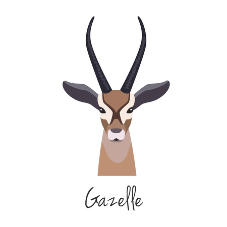 Vector flat cartoon gazelle head,Animal of Africa. , Anthelope muzzle isolated. Flat style, cartoon object. poster banner print advertising, design element.
