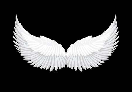 Realistic white angel wings vector Illustration