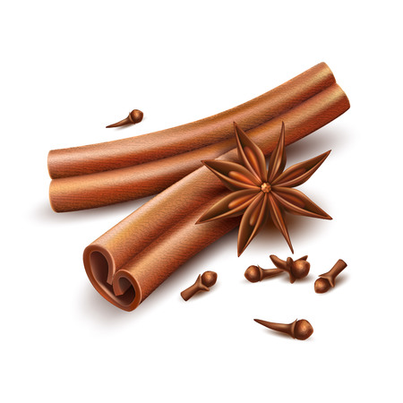 Realistic cinnamon, cloves and dried anise star. Seasoning, spices and condements for christmas, winter holiday. Vector herbs for culinary, gourmet cuisine and cooking. Delicious flavor illustration