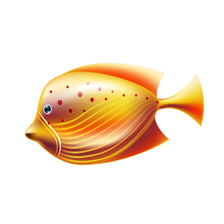 Golden tropical fish. Realistic coral reef fish, exotic underwater animal. Summer sea diving, travelling and vacation decoration, marine and aquarium world design. Vector illustration.