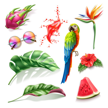 Realistic summer holiday, paradise resort design vector collection. Tropical fruits pitahaya, watermelon, hibiscus, strelizia flowers, macaw colorful parrot, sunglasses, red juice splash. Illustration