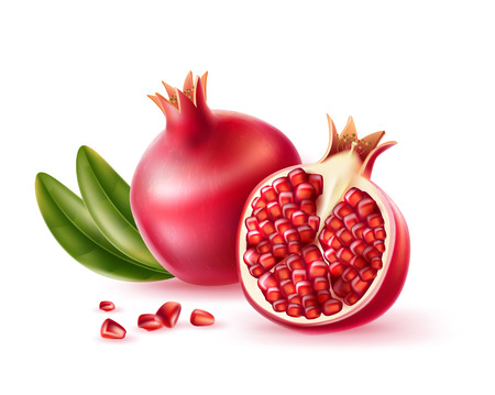 Realistic pomegranate whole, half and seeds with green leaves. Vector juicy ripe fruit for product package, menu design. Sweet tropical food full of vitamins.
