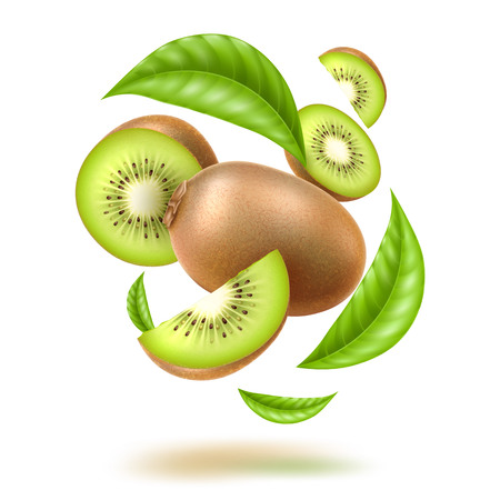 Realistic kiwi with green leaves swirl flow. Juicy exotic whole fruit, half and slice in motion Fresh organic food for healthy eating Ripe tropical berry for sweet dessert. Food package vector design. Illustration