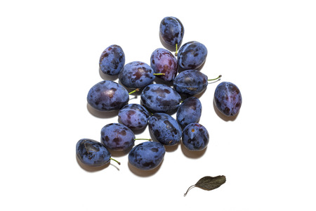 Blue, purple ripe plums on white background. Stock Photo