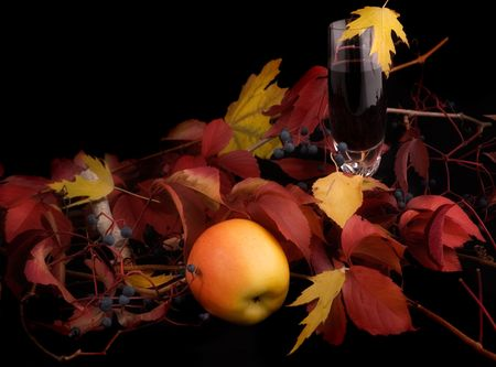 Still-life. Autumn vine, apple and leaves. Narrow focus Stock Photo - 1896197