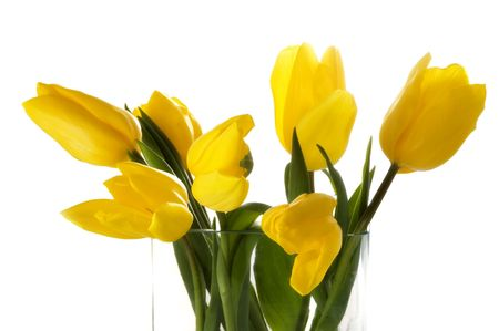 Yellow tulips in a glass vase. Isolated on white Stock Photo - 2527634