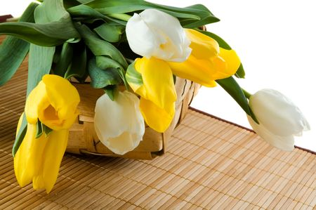 Yellow and white tulips in a basket. Spring composition. Stock Photo - 2545862