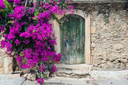 puertas viejas: Antigua puerta de madera y buganvillas en Creta Foto de archivo