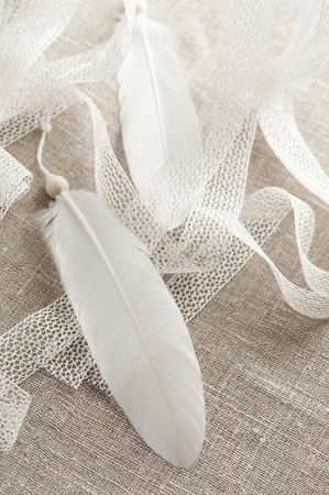 white feather: Close-up of white feather and laces. Handmade still life Foto de archivo