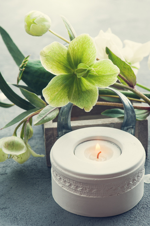 Greens with flowers on grey concrete background. Lit candle composition Stock Photo