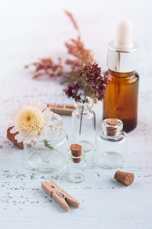 Essential oil and dry herbs, flowers in small bottles on light blue baclground. Alternative treatment concept in provence style