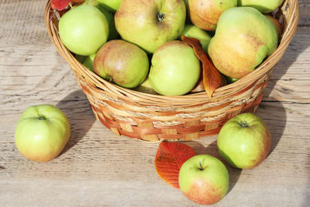 A basket of ripe apples stands on a wooden table in the fresh air
