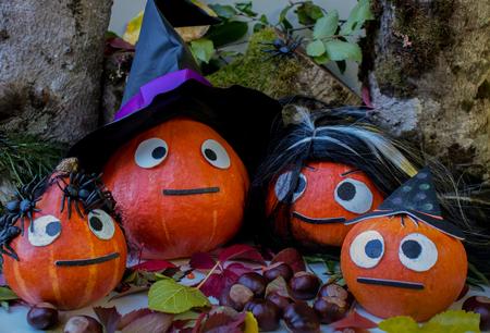 Halloween pumpkin at wood background. October holiday. Pumpkins family