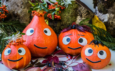 Autumn Pumpkin family congratulates on the holiday Halloween on Forest Background.