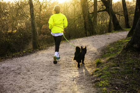 The woman does a jogging together with her dog on a leash. They ran along the path between the trees to meet the sun. Stock fotó