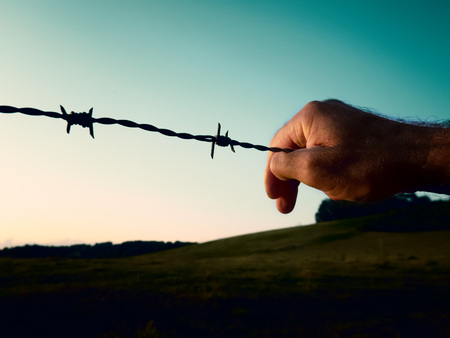 Hand on the barbed wire against the blue sky. The concept of freedom and prison.