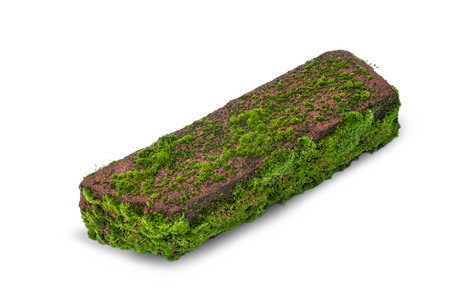 Old building brick covered with moss from old age and dampness isolated on white background. Фото со стока