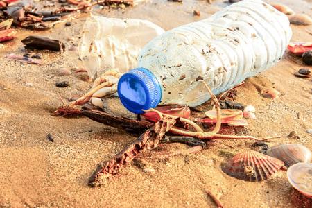 Bouteille en plastique, coquillages et étoiles de mer mortes sur du sable mouillé jeté par la vague de la mer . La pollution. Notion d'écologie.