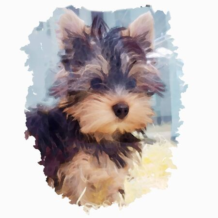 Portrait of a dog breed Yorkshire Terrier in the style of watercolor painting