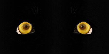 A beast is watching . A dog of the breed Labrador looks forward with yellow sad eyes. Realistic graphic vector drawing closeup.