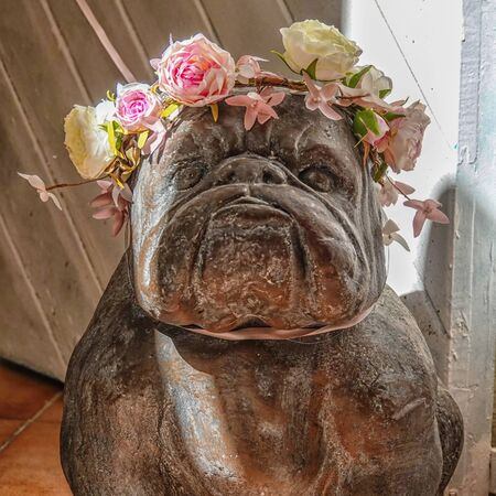 Fragment of a figurine of a dog of the breed French Bulldog with a wreath of flowers not on his head Stockfoto