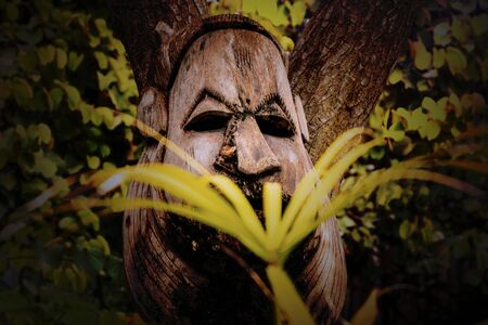 Exotic wooden mask among tropical trees in rainforest Stockfoto
