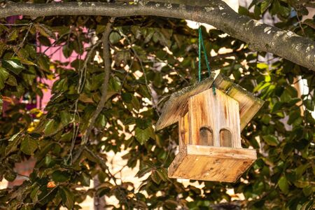 Beautiful empty bird feeder in the form of a wooden house on the branches of a tree