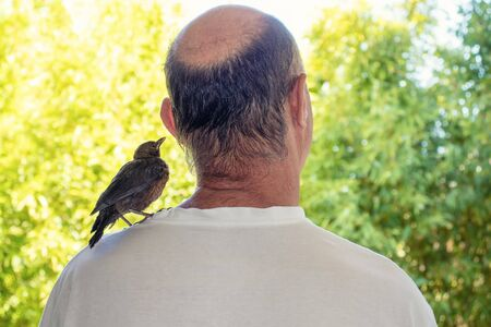 A man and a bird on his shoulder look into the distance together. The view from the back.