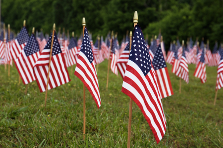 A lot of american flags. Memorial Day or Independence Day celebration in USA Stock Photo