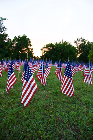 celebration: A lot of american flags. Memorial Day or Independence Day celebration in USA Stock Photo